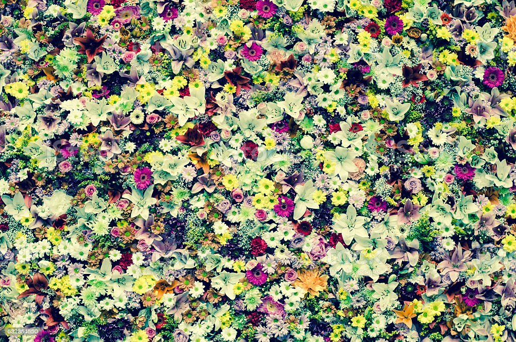 flowers wintage effect stock photo