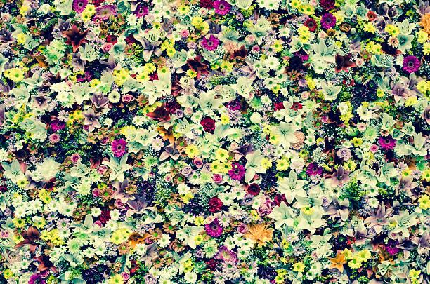 flowers wintage effect