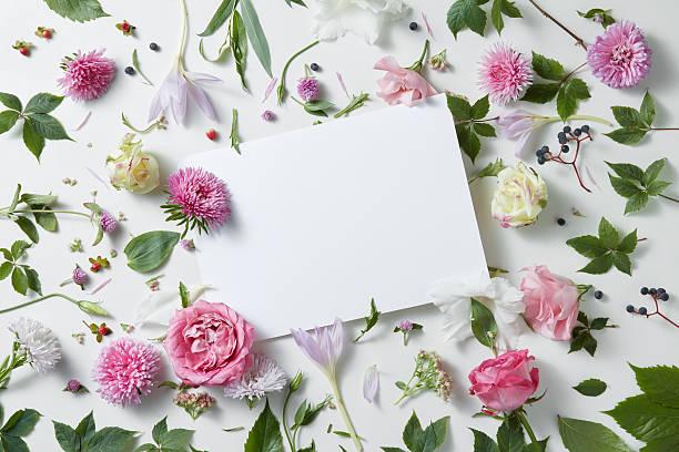 flowers with empty white notebook - schöne bilderrahmen stock-fotos und bilder