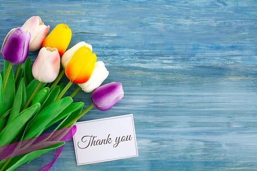 A bouquet of brightly coloured tulips with a card saying thank you.  Shot from above on blue rustic wood with copy space to the right of the image.