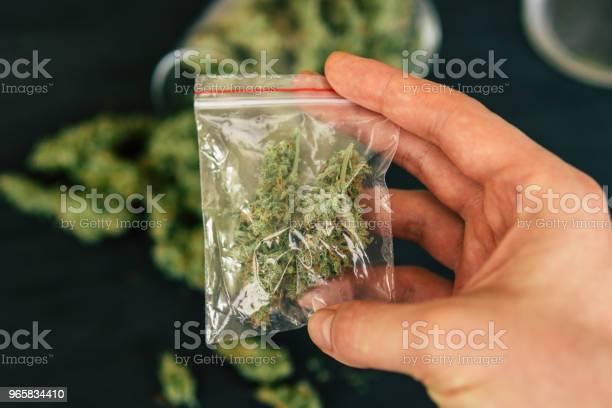 Flowers With Trichomes On A Scales With A Dark Background Macro Shot Of Cannabis - Fotografias de stock e mais imagens de Agricultura