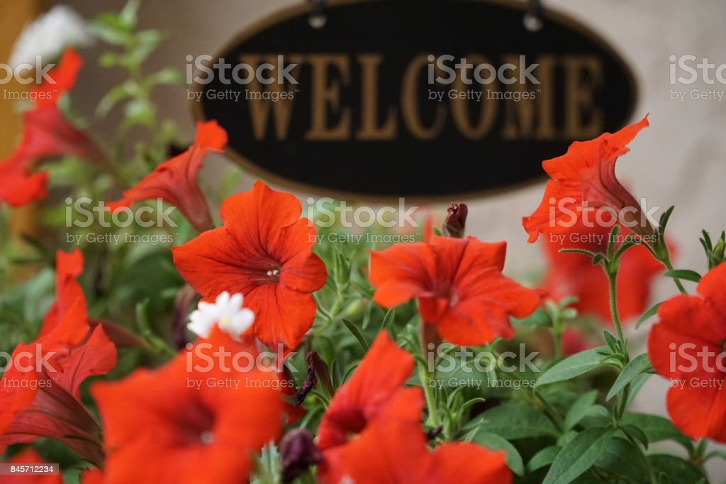 Flowers with Welcome Sign stock photo