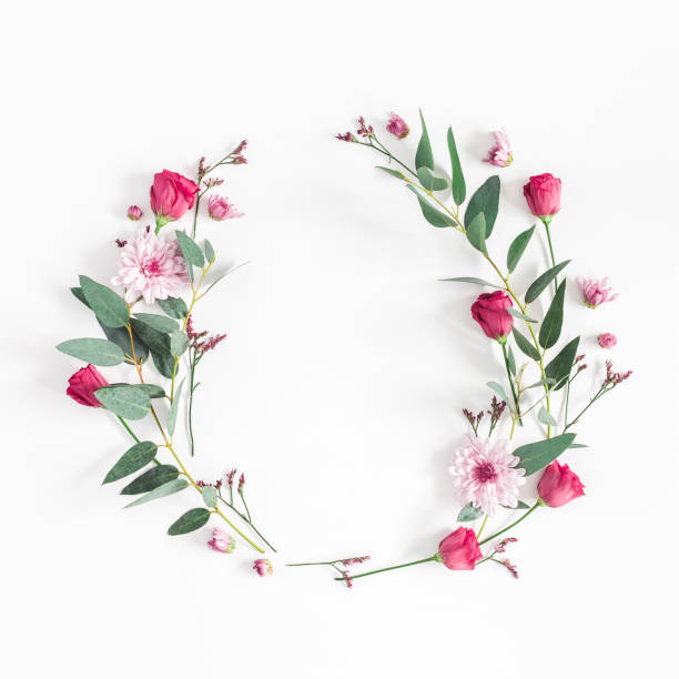 flowers wreath on white background. flat lay, top view - flowers stock photos and pictures