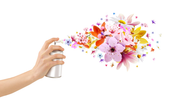 istock Flower-scented room sprays and flowers from inside 479329817