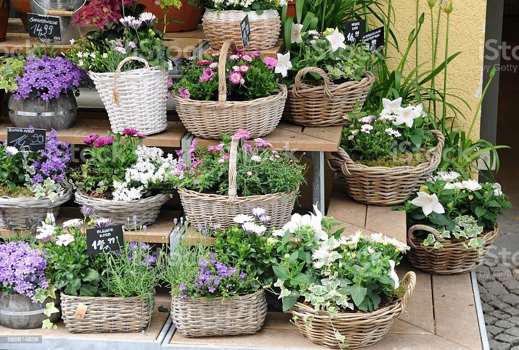 Flowershop stock photo