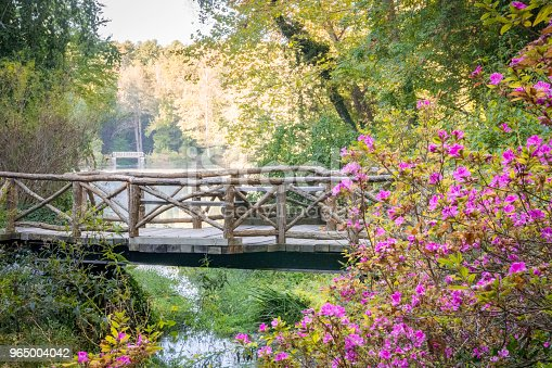 Bridge over water surrounded by green forest and pink purple flowers