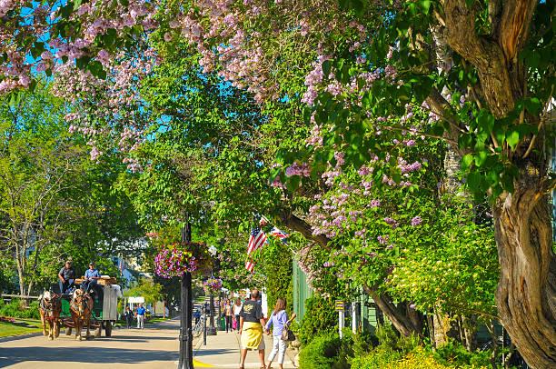 flowery mackinac street - mackinac island stock photos and pictures