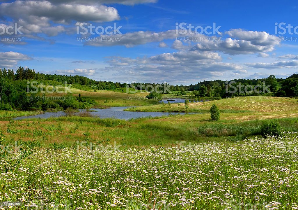flowery place royalty-free stock photo