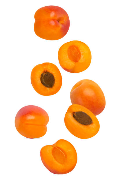 Flowing apricot fruits isolated on white background with shallow depth of field stock photo