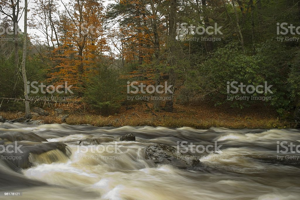 Scorre Bushkill Creek foto stock royalty-free
