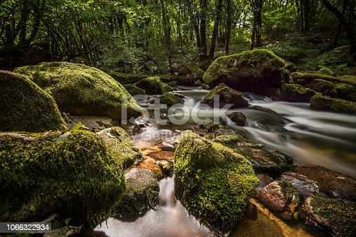 The river fowey flows through Golitha Falls, Cornwall, Uk