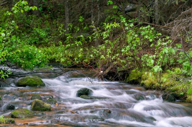 Stromend bronwater foto