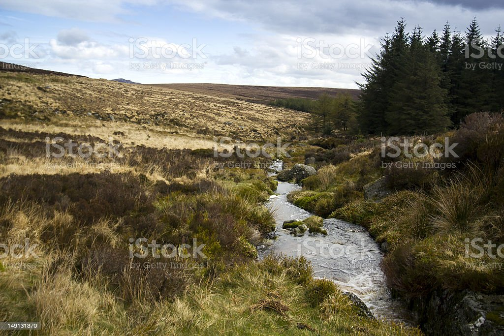 Flowing water inside Wicklow and Sally Gap, Ireland stock photo