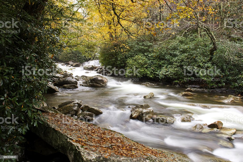 Flowing Water Smoky Mountains in Autumn royalty-free stock photo