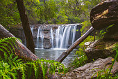 Flowing waterfall with rich green rainforest environment, Australia
