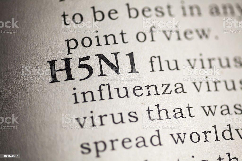 H5N1 flu stock photo