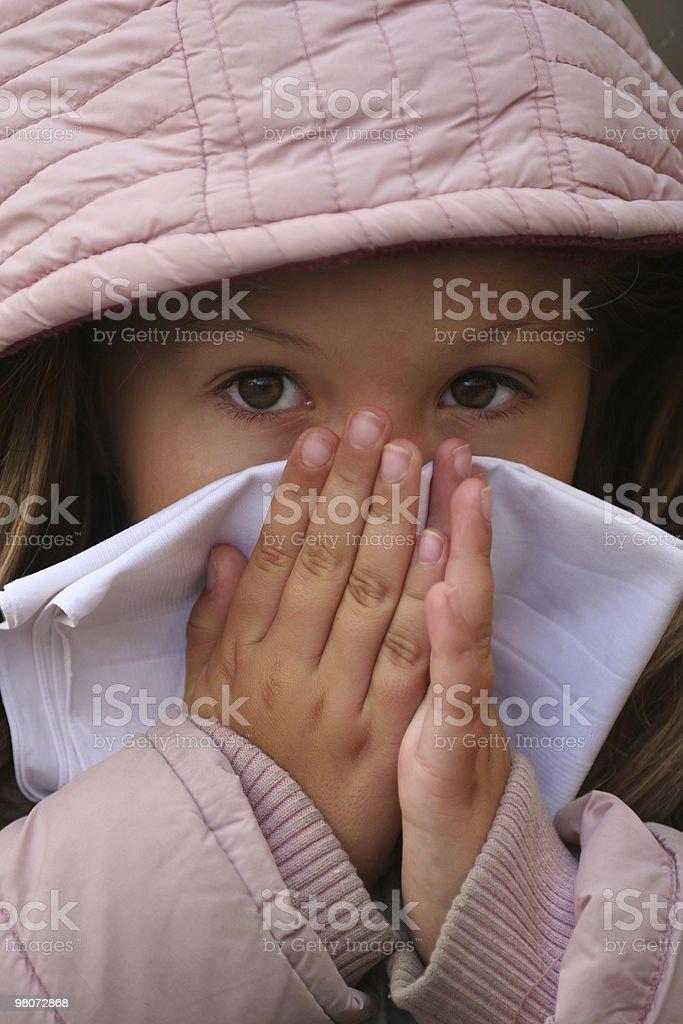 Flu Virus royalty-free stock photo