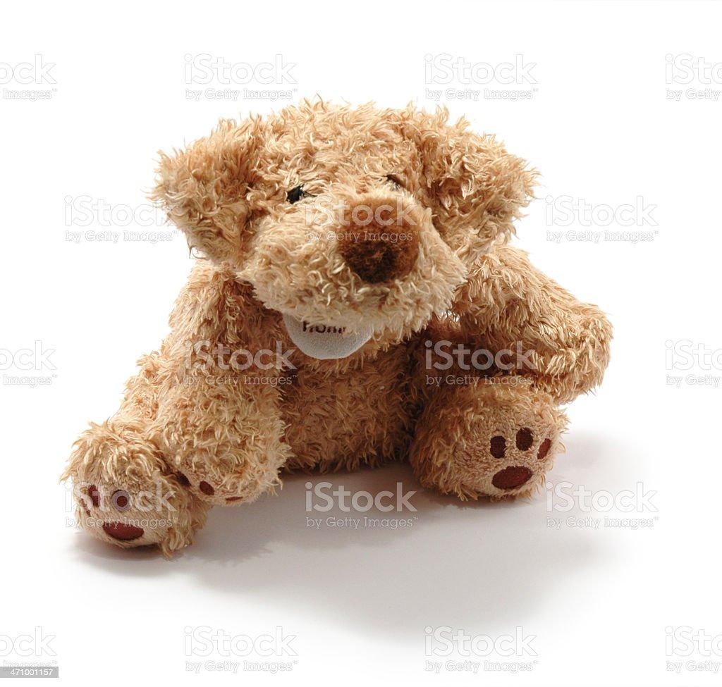 Fluffy Dog II royalty-free stock photo