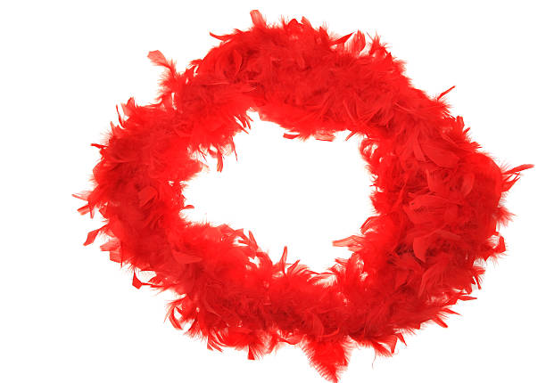 Fluffy red feather boa string on white – Foto