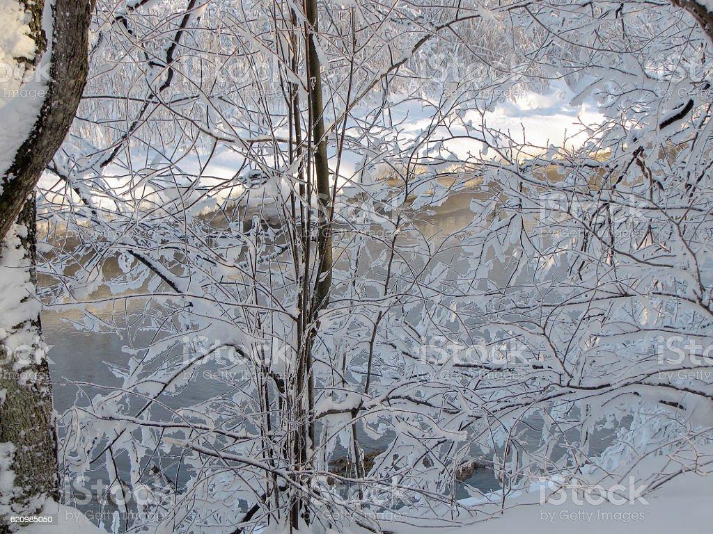 Macias de neve foto royalty-free