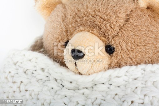 Fluffy teddy bear with winter wool scarf