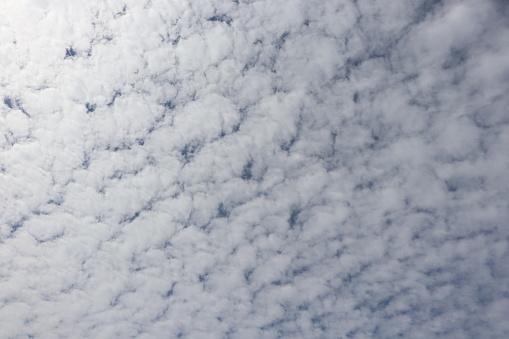 무성 한 흰 구름 Cloudscape 풀 프레임 0명에 대한 스톡 사진 및 기타 이미지