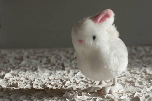 fluffy white rabbit on background toy bunny - plüschhase stock-fotos und bilder