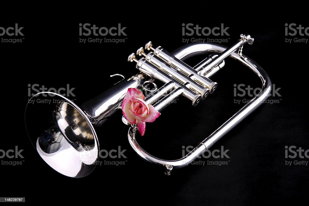 Flugelhorn and Pink Rose royalty-free stock photo