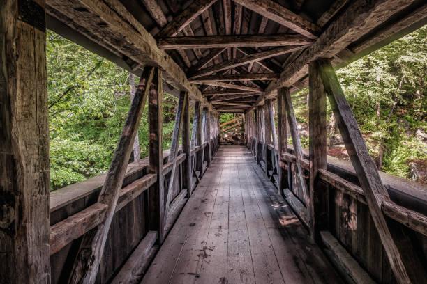 Desfiladeiro de Flume cobriu a ponte-Parque Estadual do entalhe de Franconia - foto de acervo
