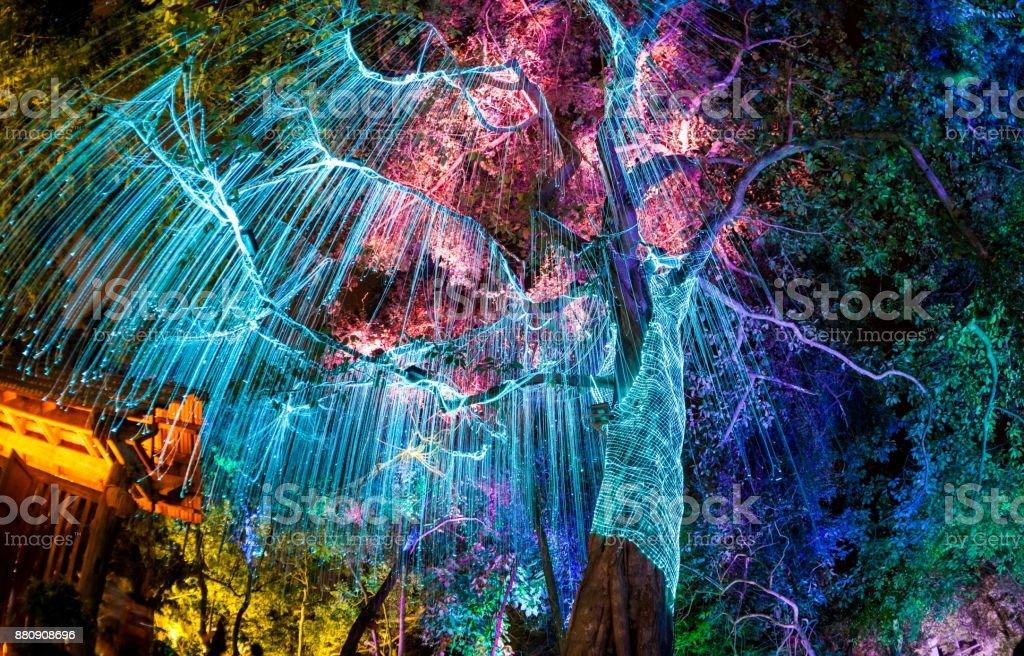 Fluorescent light under a dark tree in Penang stock photo