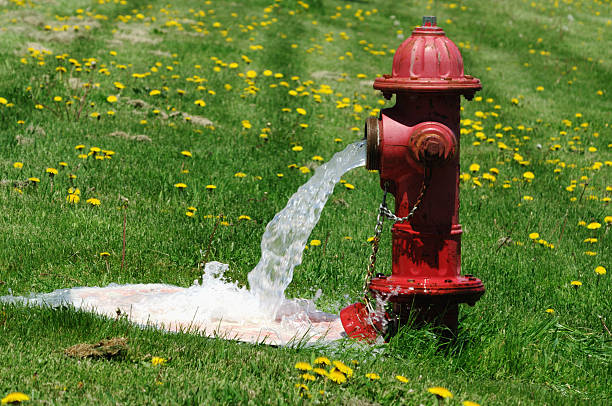 Flushing the Fire Hydrant  fire hydrant stock pictures, royalty-free photos & images