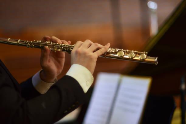 querflöte spielen - philharmonie stock-fotos und bilder