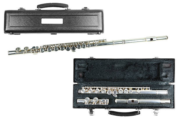 Flute with cases stock photo