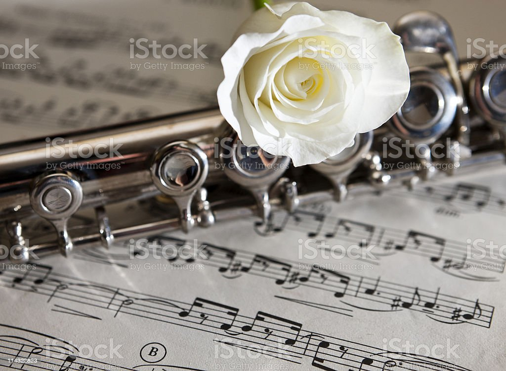 Flute with music and white rose royalty-free stock photo