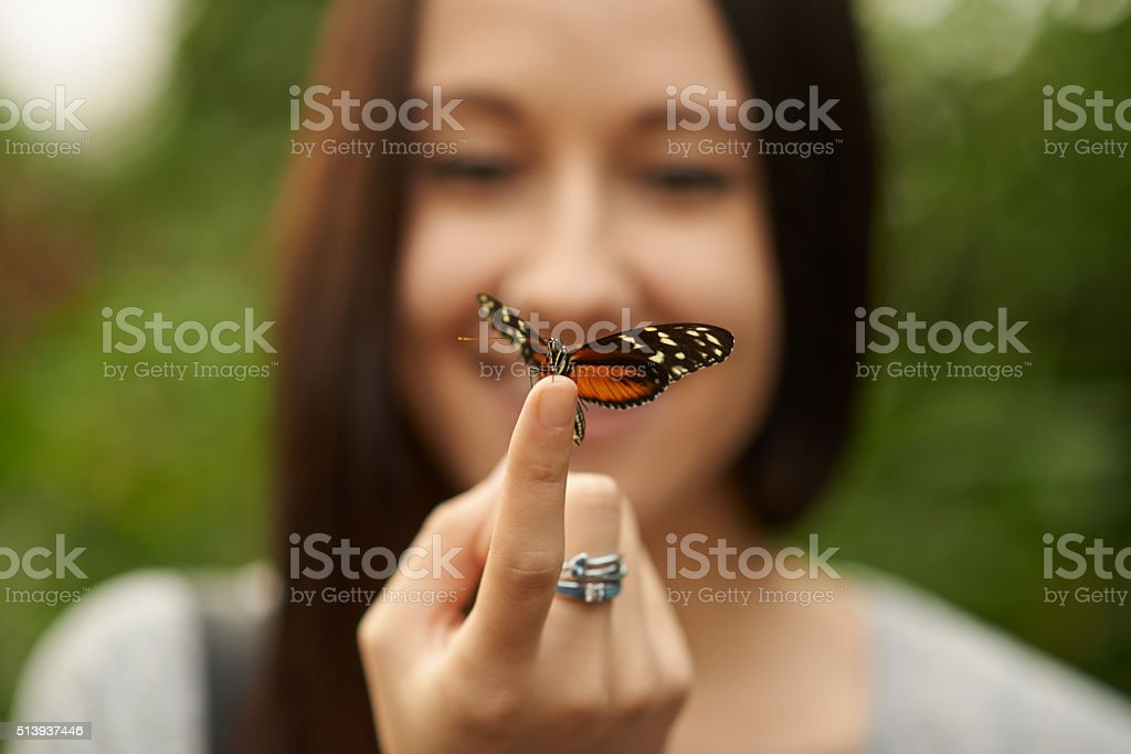 Flutter by sweet butterfly stock photo