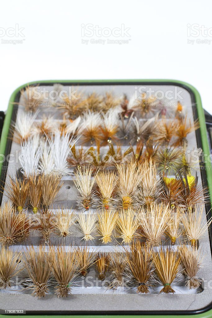 Fly Box Detail Dry Flies stock photo
