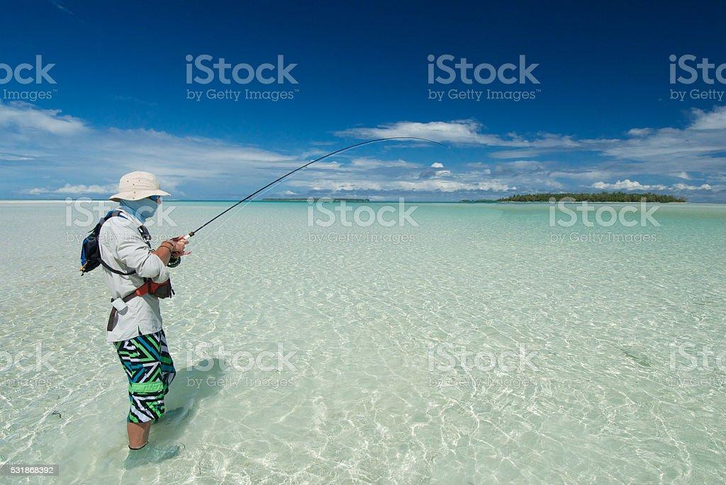 fly fisherman bringing in bonefish stock photo