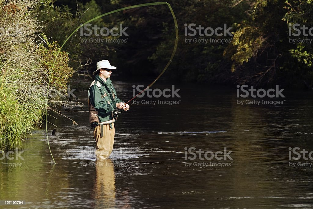 Fly Fisherman Casting royalty-free stock photo