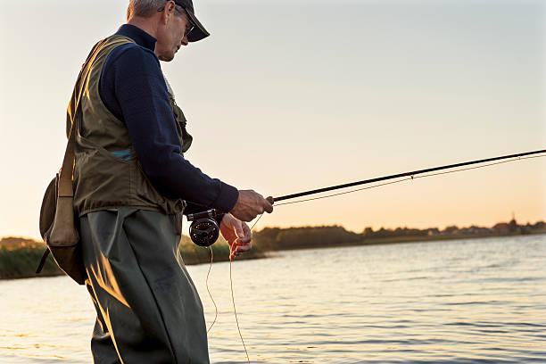 fly fisherman geduldig gewartet für einen snack - angeln dänemark stock-fotos und bilder