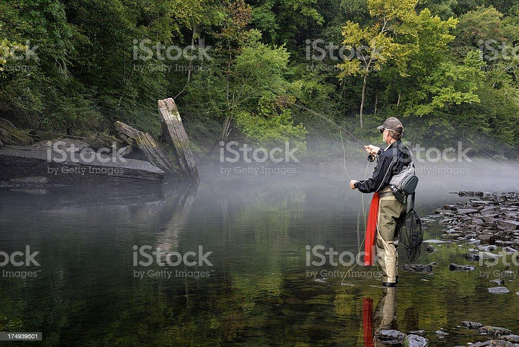 Fly Fisherman royalty-free stock photo