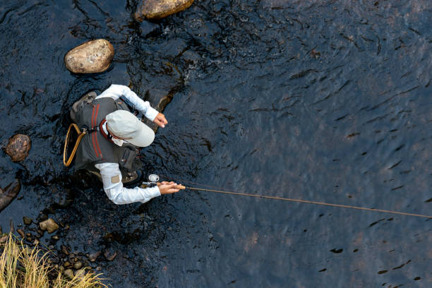 Fly fisherman using flyfishing rod Fly fisherman using flyfishing rod in beautiful river fishing stock pictures, royalty-free photos & images