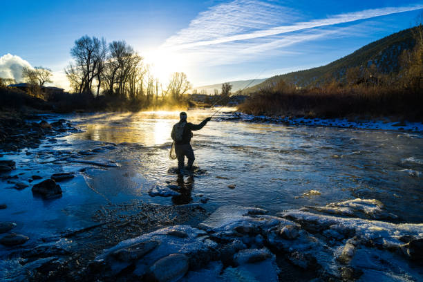 fly fisherman winter fishing - fishing stock pictures, royalty-free photos & images