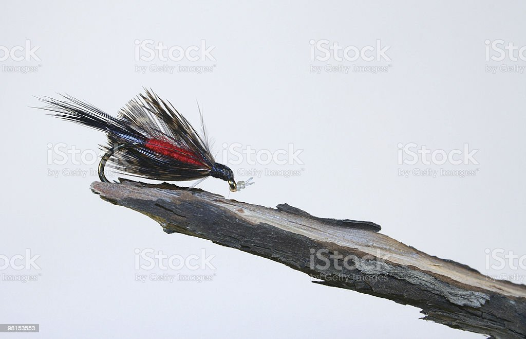 Fly fishing bait royalty-free stock photo