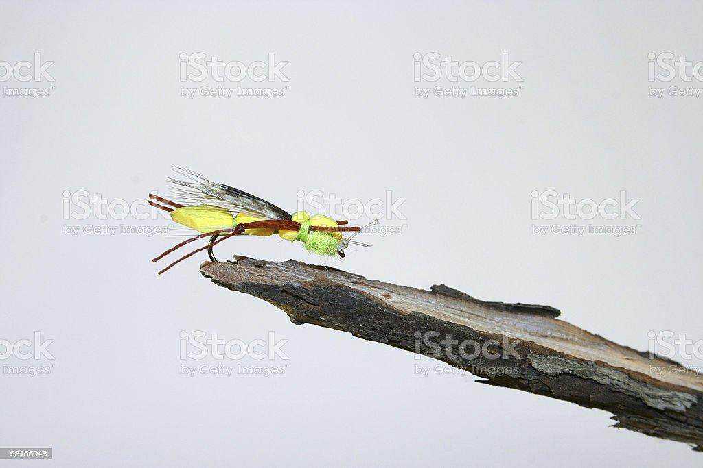 Fly fishing bait royalty-free stock photo
