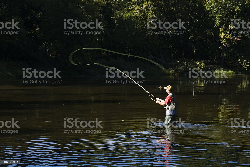 Fly Fishing Casting royalty-free stock photo