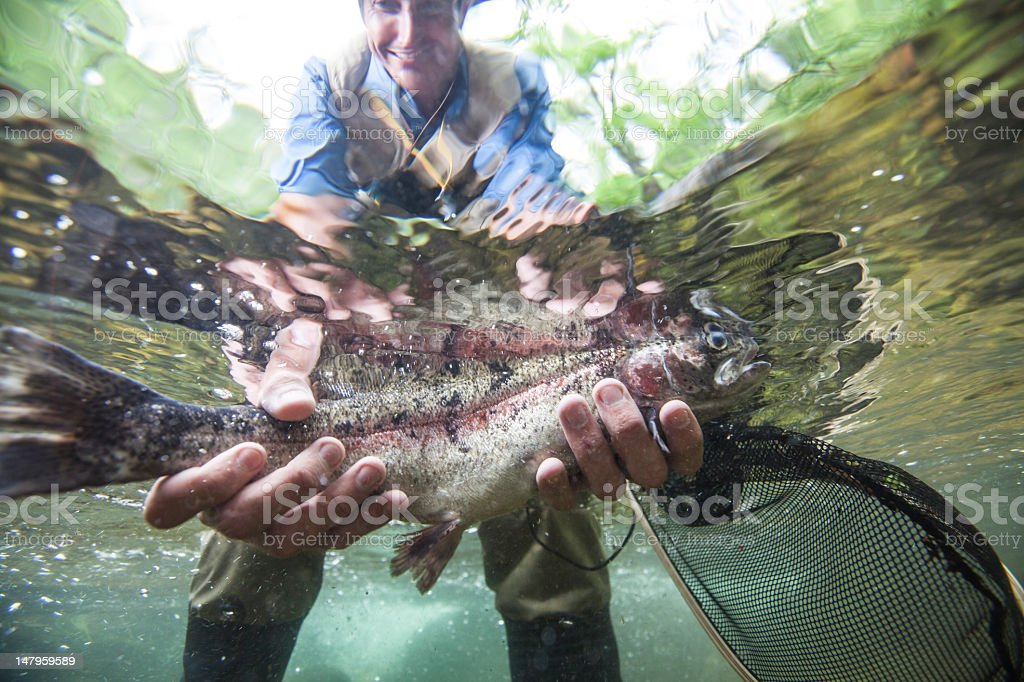 Fly fishing catch stock photo