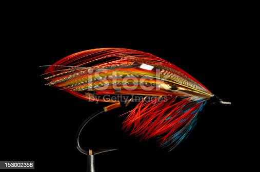 istock Fly fishing flies 153002358