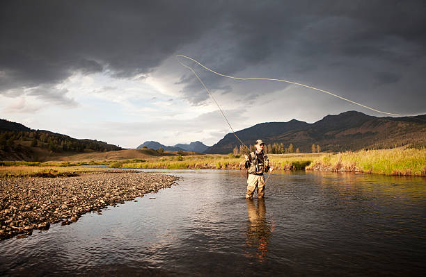 Fliegenfischen von Regenbogenforelle auf der westlichen USA-Fluss. – Foto
