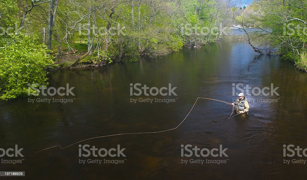 Fly fishing for trout stock photo