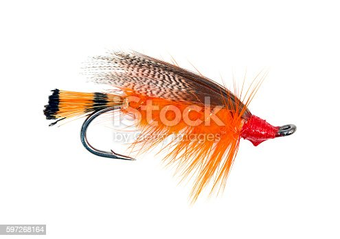 istock Fly fishing hook 597268164